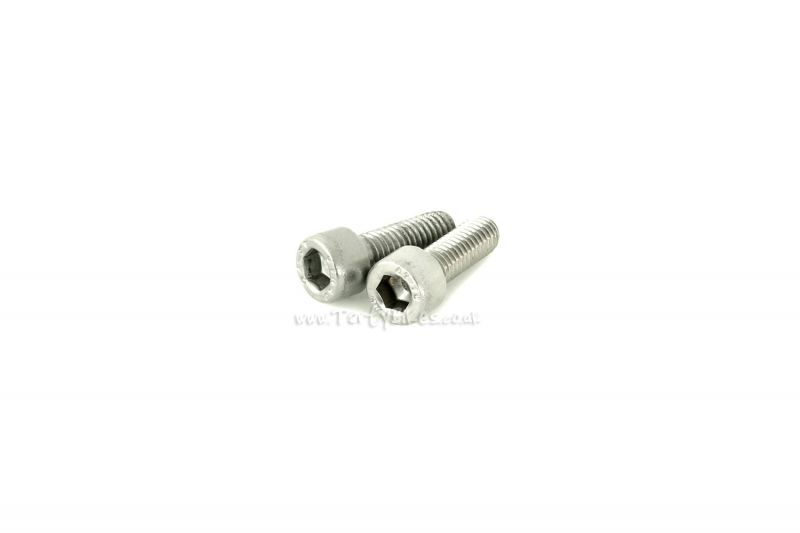 Hope Caliper Bolts (Pair)